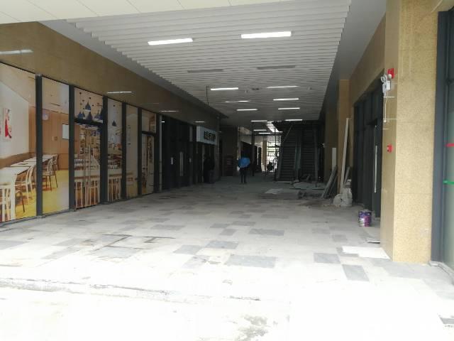 布吉丹竹头地铁站红本商铺
