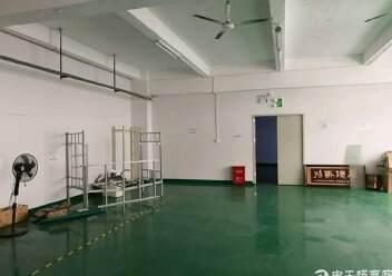 福永国道边独院12000平有精装修出租图片7