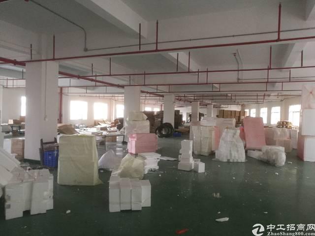 仲恺陈江红本独院带装修标准厂房26000平-图4
