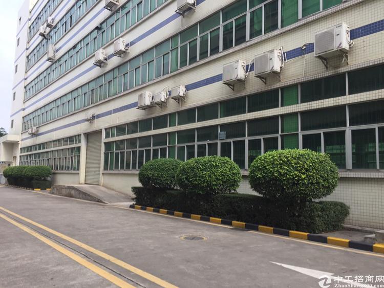 布吉新出红本独门独院厂房1-5层2万平方宿舍按需可分租