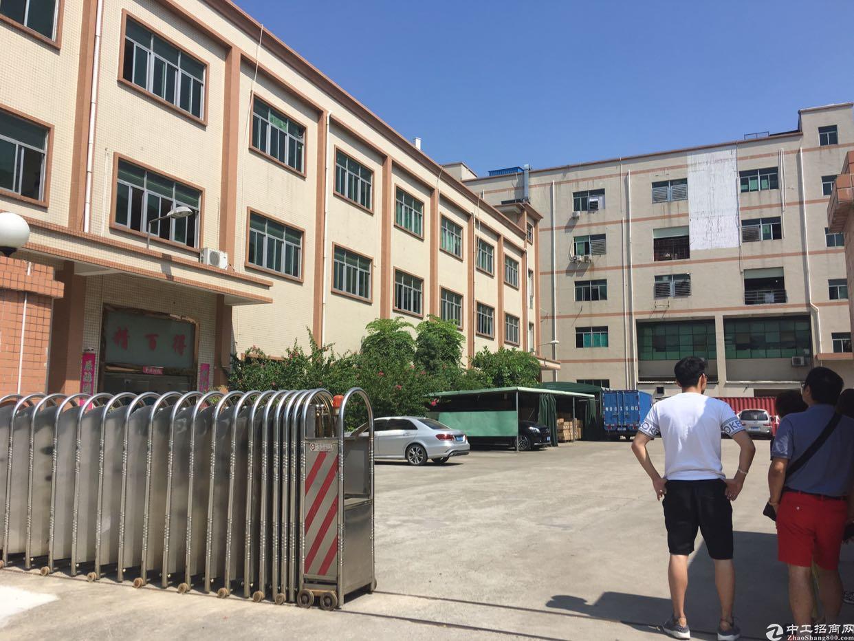 福永4500平原房东红本独院厂房(大小可分)