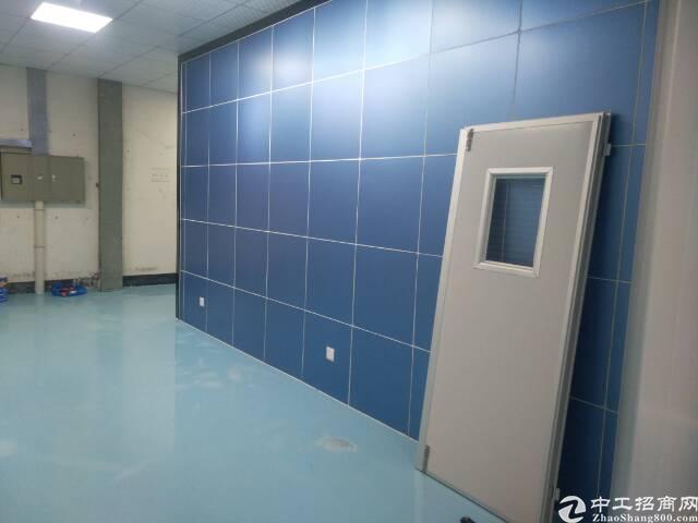 沙井后亭,新出一楼一整层1800平方带精装修-图2