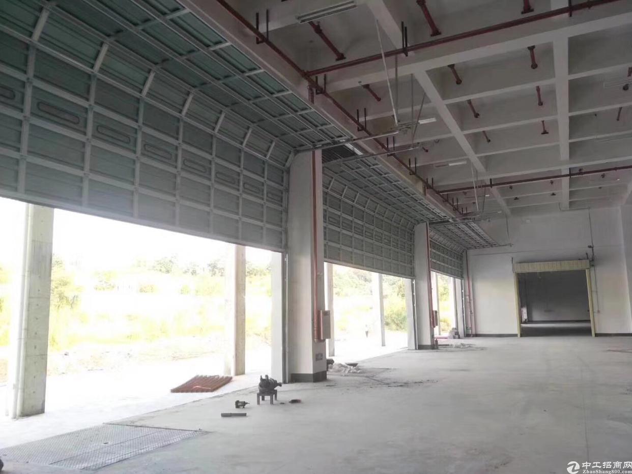 福永107国道附近一楼1600平方带卸货平台