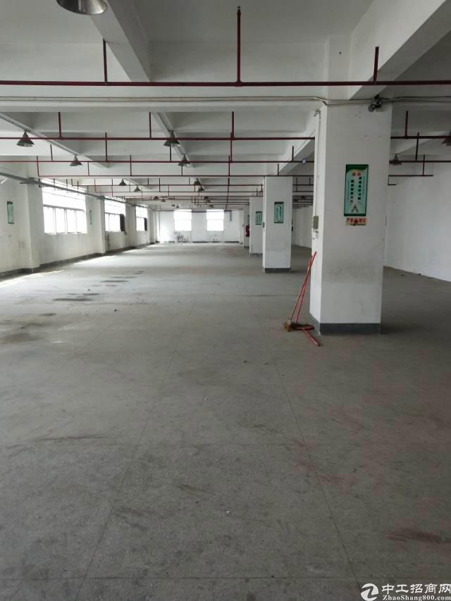 福永稔田工业区一楼200平出租