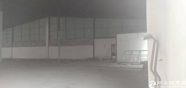 龙华新区龙华汽车站旁边单一层厂房1500平高八米,低价出租-图6