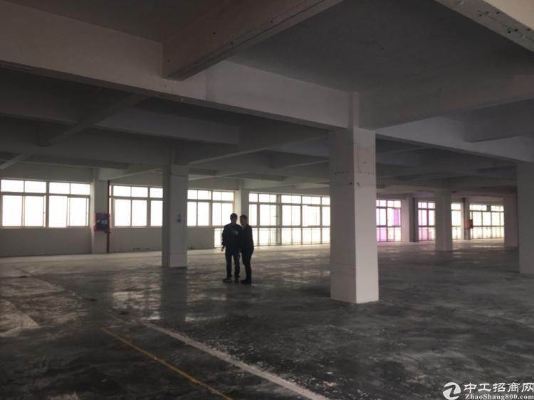 龙华大浪新出4000平独门独院厂房-图3