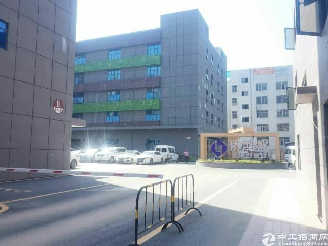 西乡银田工业区写字楼88-4380平招租