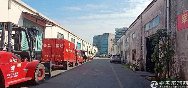 龙华新区龙华汽车站旁边单一层厂房1500平高八米,低价出租-图4