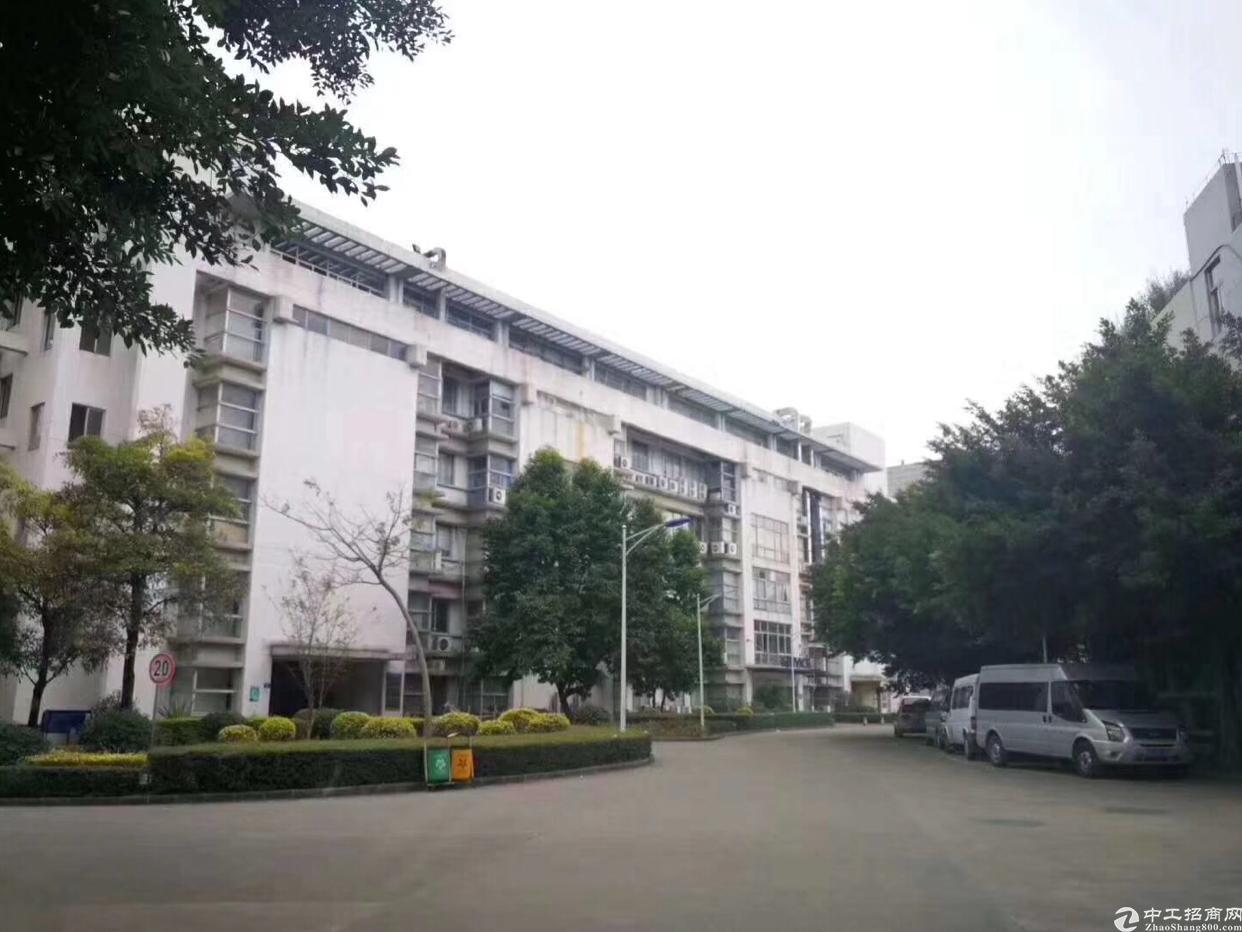 东莞花园式厂房总面积15200平出售