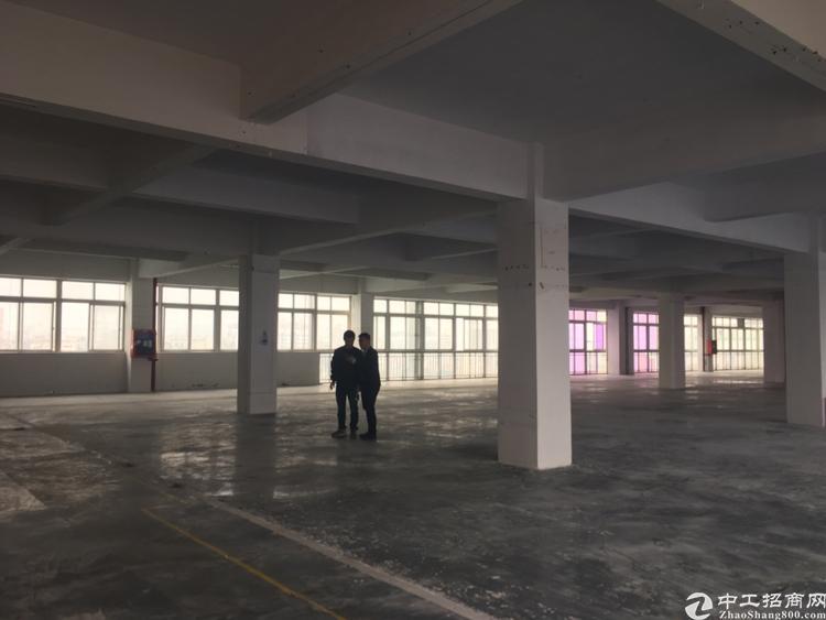 龙华大浪新出4000平独门独院厂房-图4