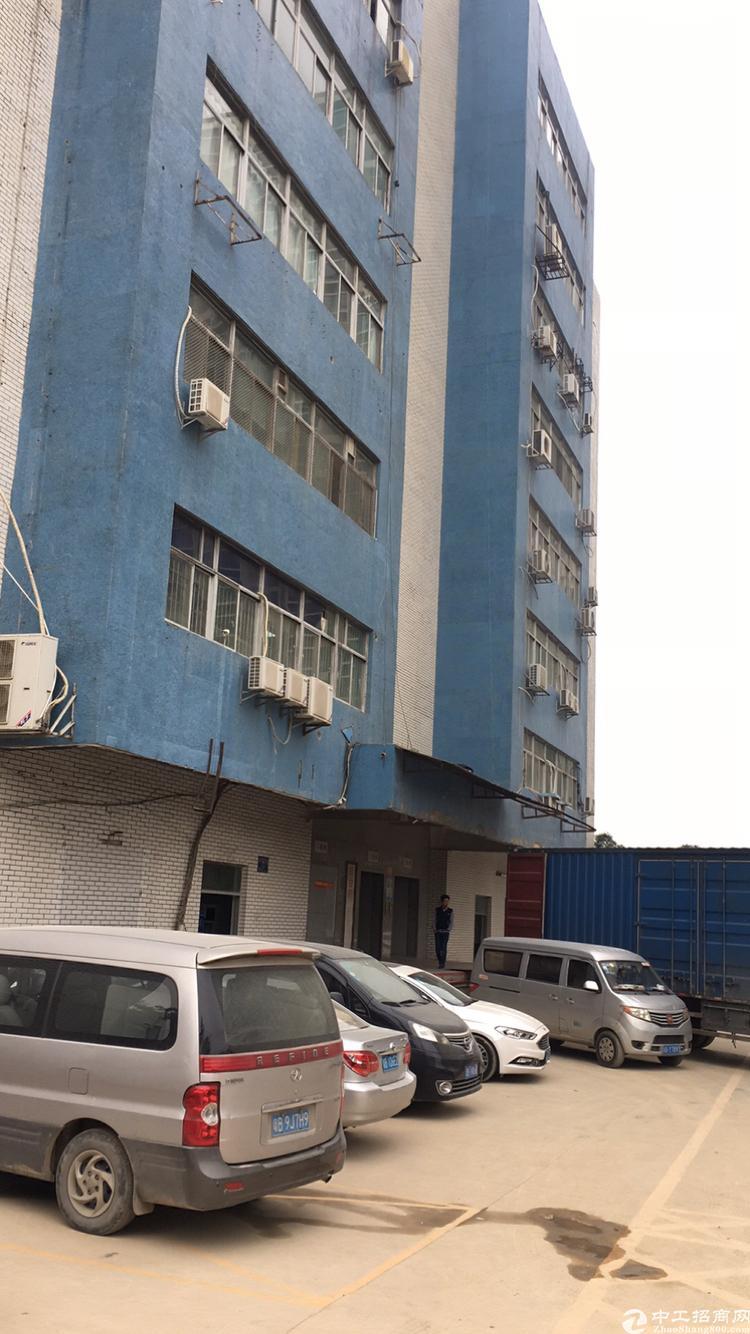 一楼稀缺红本厂房,仅售2500平米