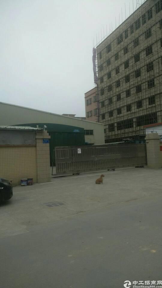 企石镇原房东出租单一层厂房2400平方
