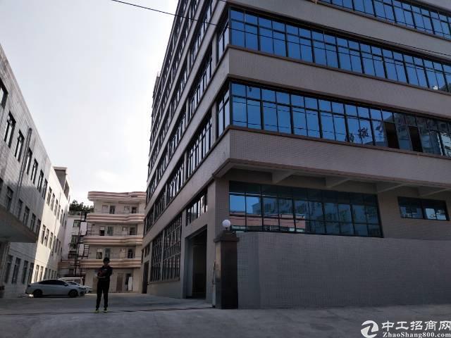 东莞大朗成熟工业区全新厂房3800平