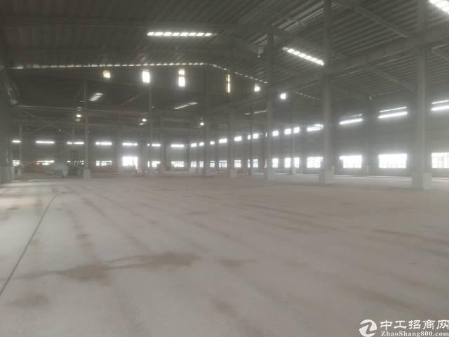 园洲全新厂房出租,滴水12米,附近无居民