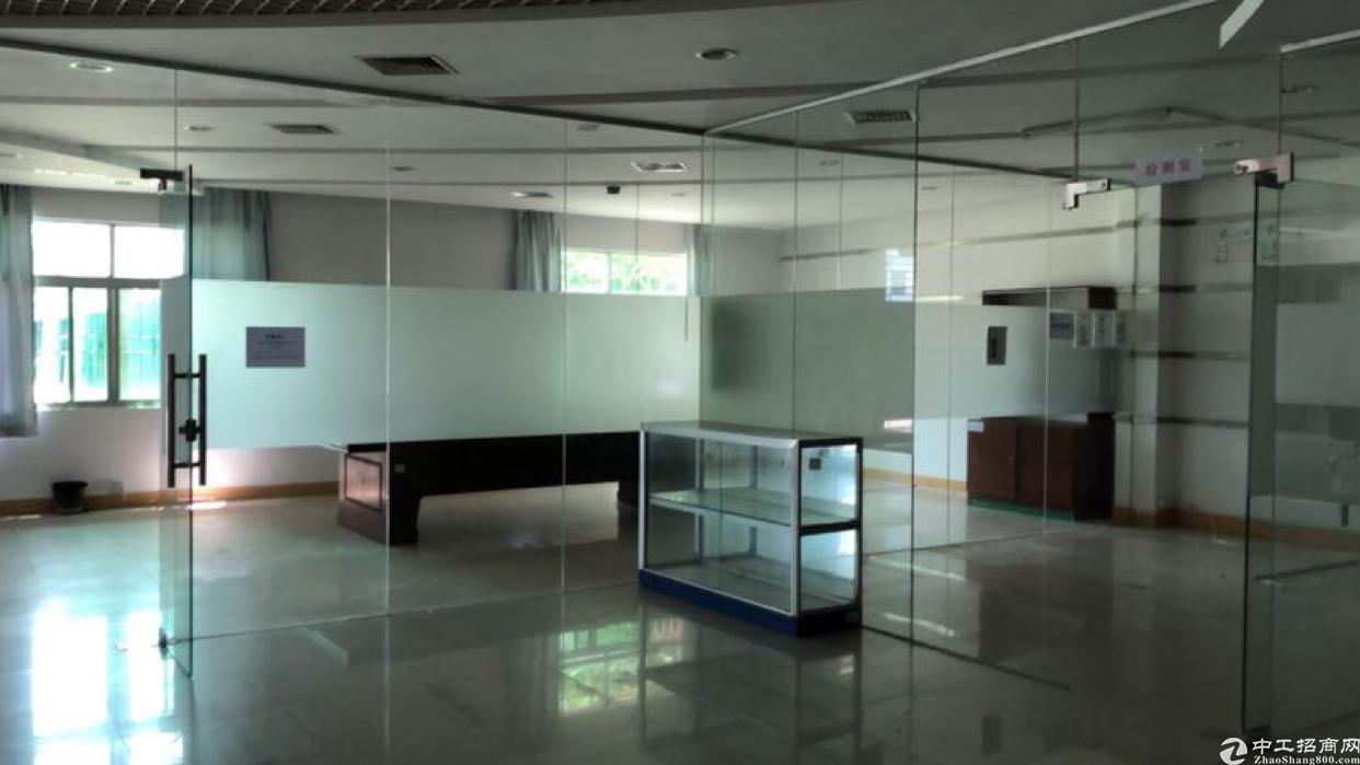 坑梓新出楼上600平电子贸易精装厂房-图3