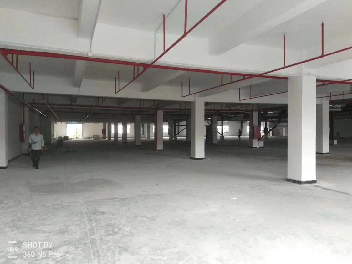清溪镇楼上精装修厂房出租,1200平米只租14元-图3