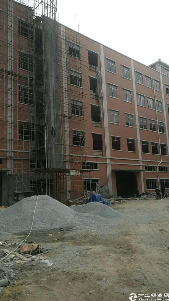 企石镇全新标准厂房出租11800平方靠山