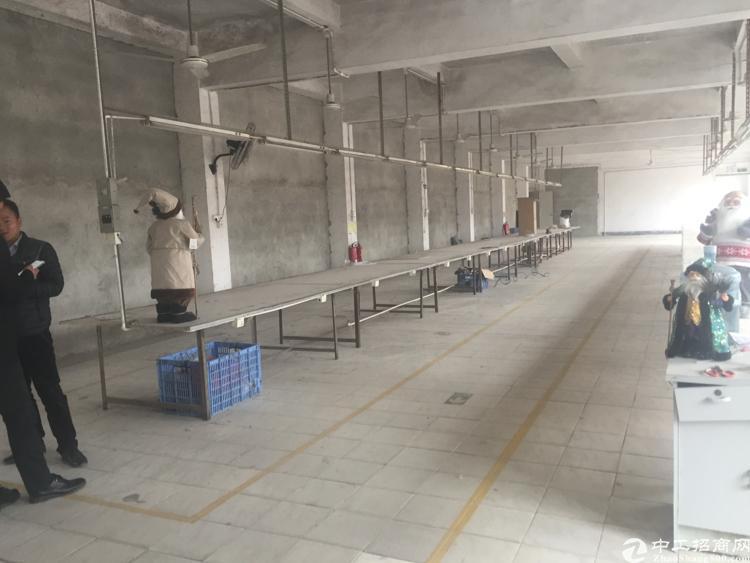 深圳坪山坑梓秀新工业区二楼1000平米标准厂房招租
