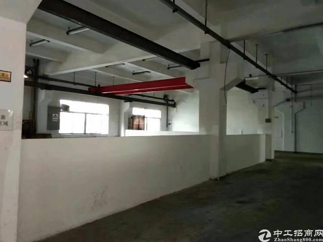 松岗镇中心一楼800平米,有办公室装修,行车免费用!