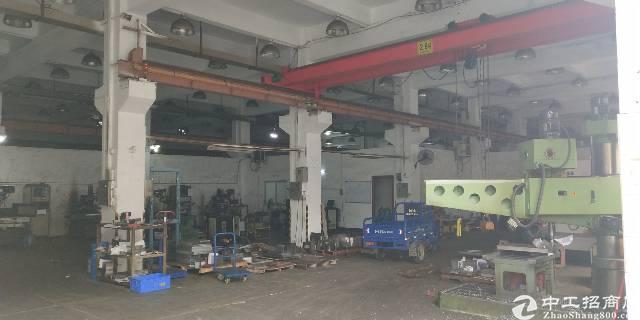 村尾工业区内出租一楼600平方