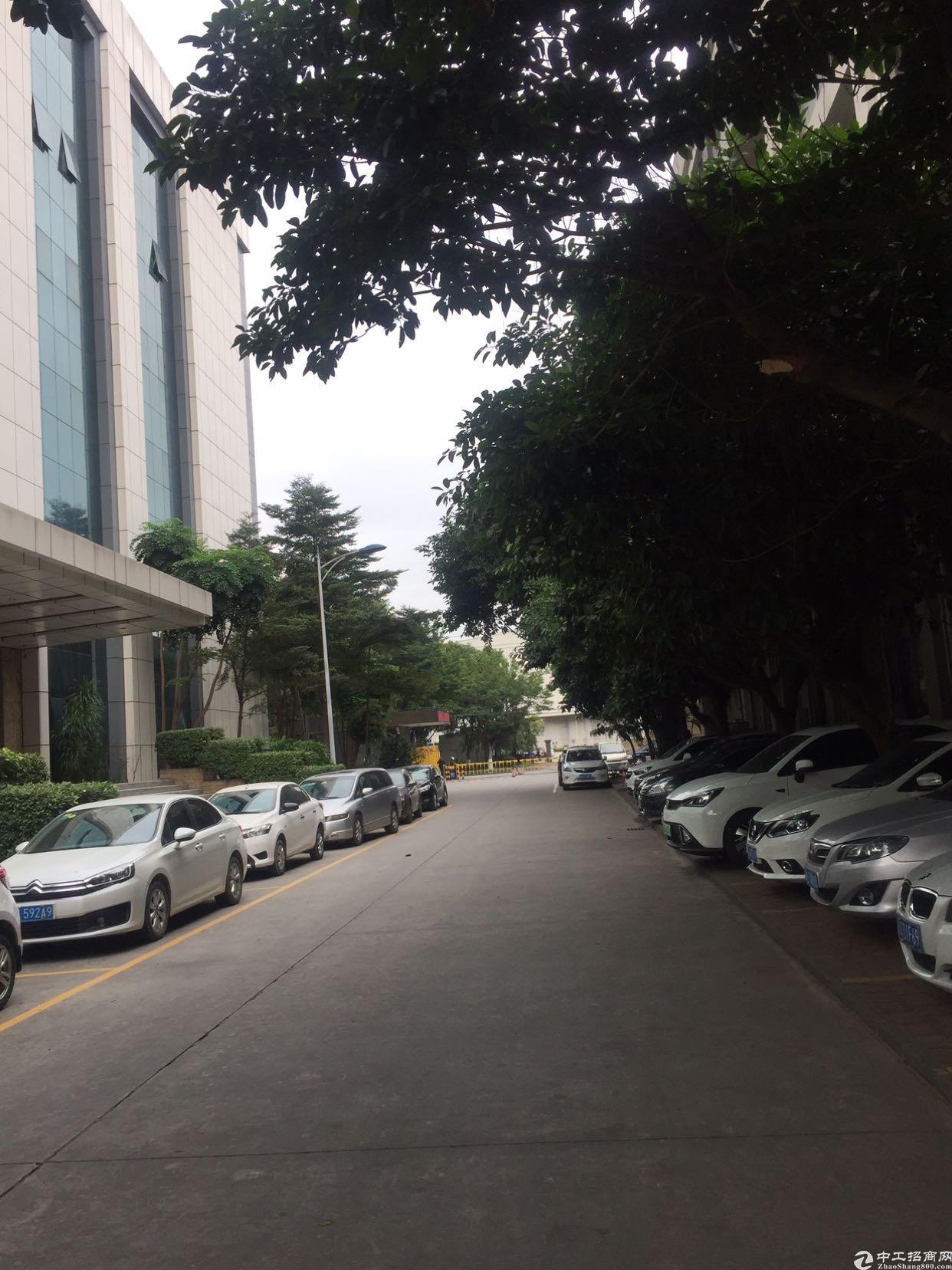 黄浦东区骏功路边上新出楼上2100平厂房招租