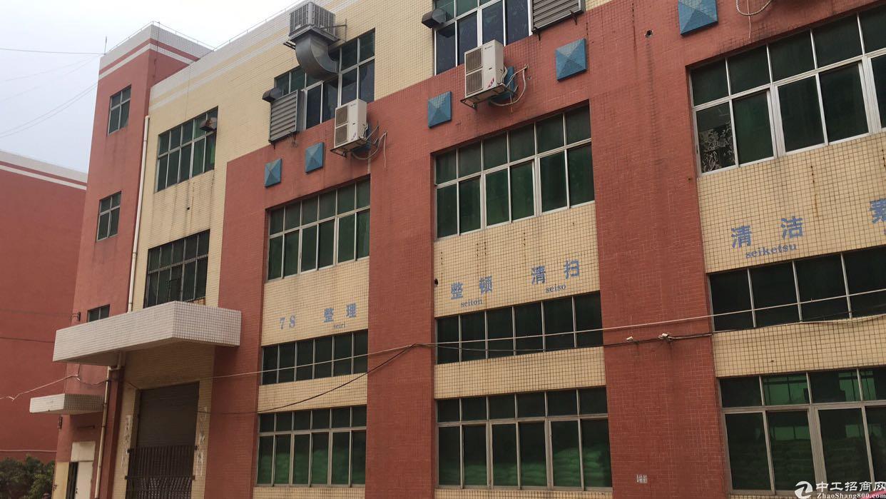 福永大洋田新出厂房400平有装修靠107国道