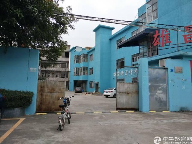 横沥镇独门独院全新便宜单一层厂房出租