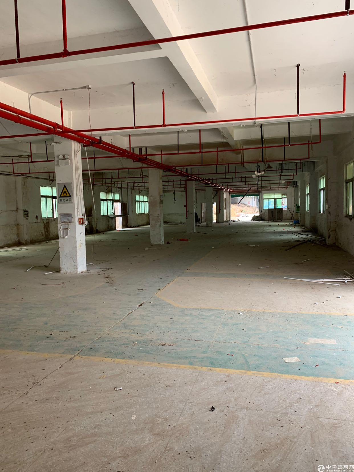 出售坪山独院标准厂房20000平有红本证件齐全
