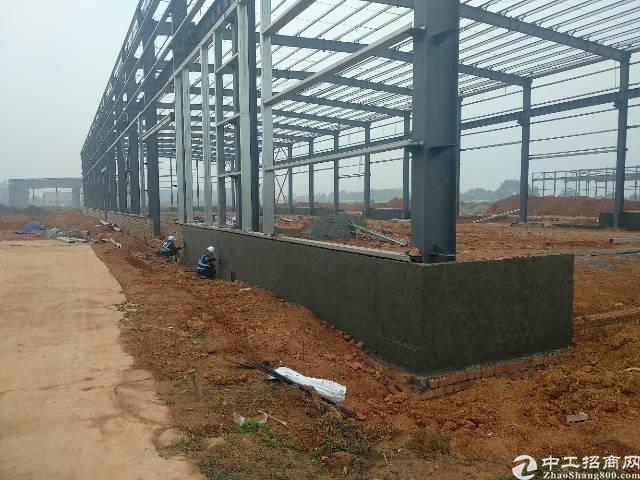 无税收要求,可喷漆喷塑喷涂,13米单层钢结构厂房