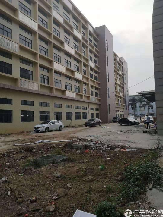 平湖全新工业园33000平米出租