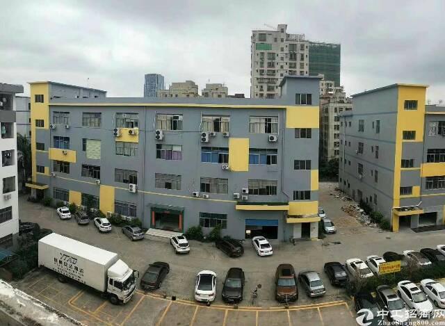 大浪商业中心零距离带装修厂房500平出租
