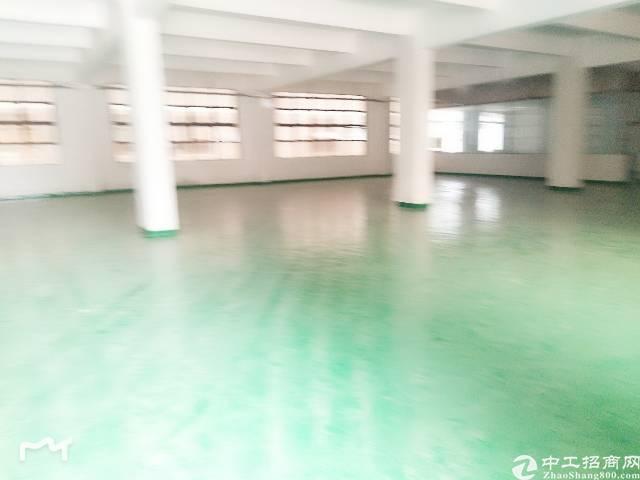 平湖富民工业区原房东无公摊楼上800平方米
