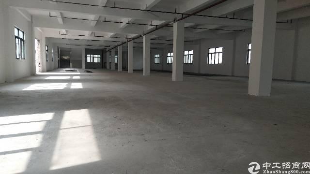 厚街新出可做污染行业厂房13000方招租可分租900方起