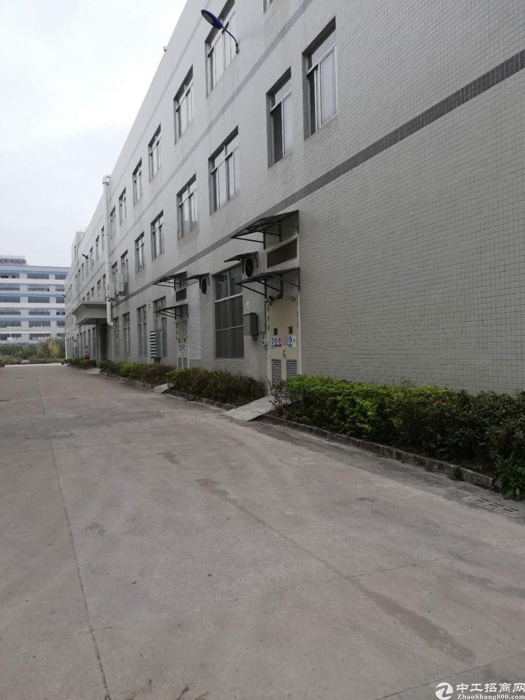 水口东江工业区全新单一层钢结构800平方出租