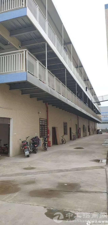 原房东全新独院单一层4500平方滴水七米-图3