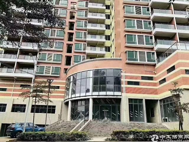 龙岗区横岗安良圆山街道新出大型公寓17600平招租12年合同