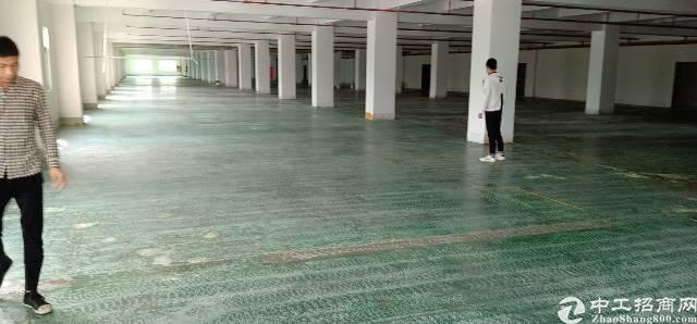 横岗六约附近新出厂房单层6800平,共5层,零距离地铁站