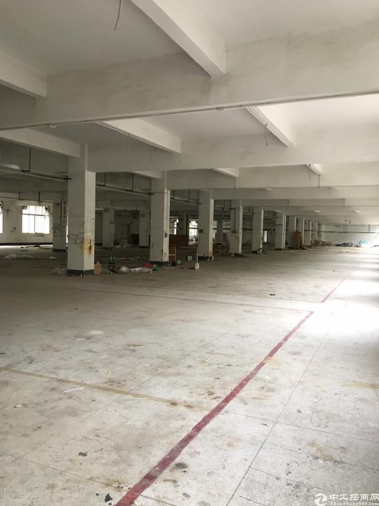 坪山新出2楼整层3260平米红本厂房出租