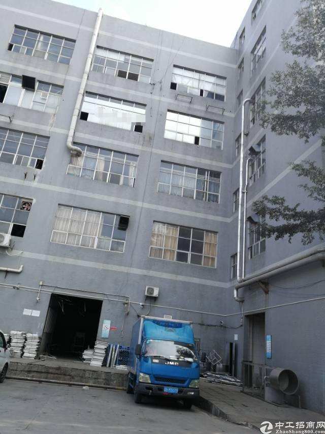 布吉丹竹头独院整栋红本厂房