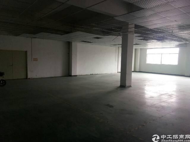 清溪车站附近新出带现成装修厂房350㎡出租-图3