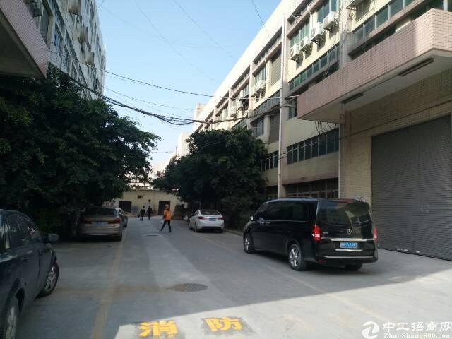 宝安沙井共和原房东厂房1到3层6000平方