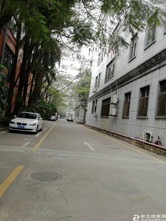 福永凤凰107国道独栋厂房5520平方厂房出租带红本