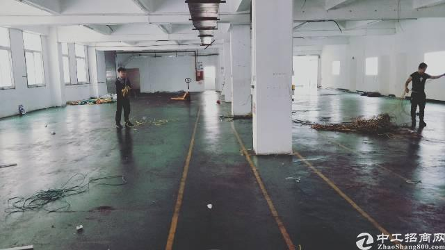 福永大洋田新出一楼1000平方物流仓库出租