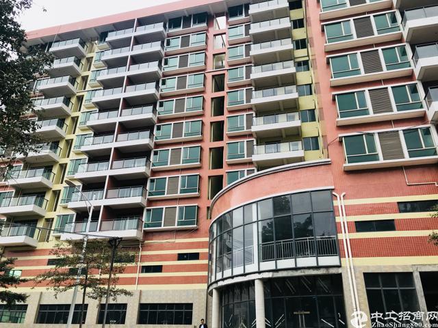 公寓实际面积出租原房东繁华区域旁有多条高速旁有高新产业园13