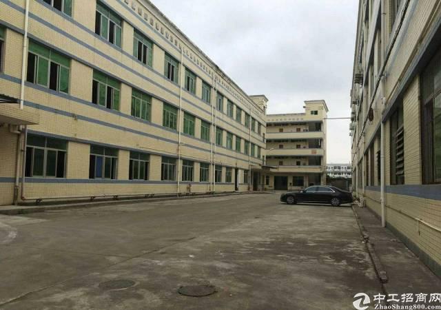 平湖山厦杉坑工业区6米高1550平方一楼厂房招租