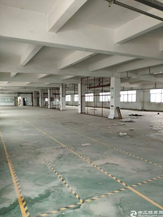 龙岗中心城附近新出一楼500平方高五米标准厂房出租