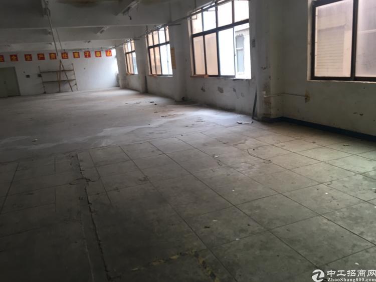 鹤山市共和镇1万平方独门独院 可分