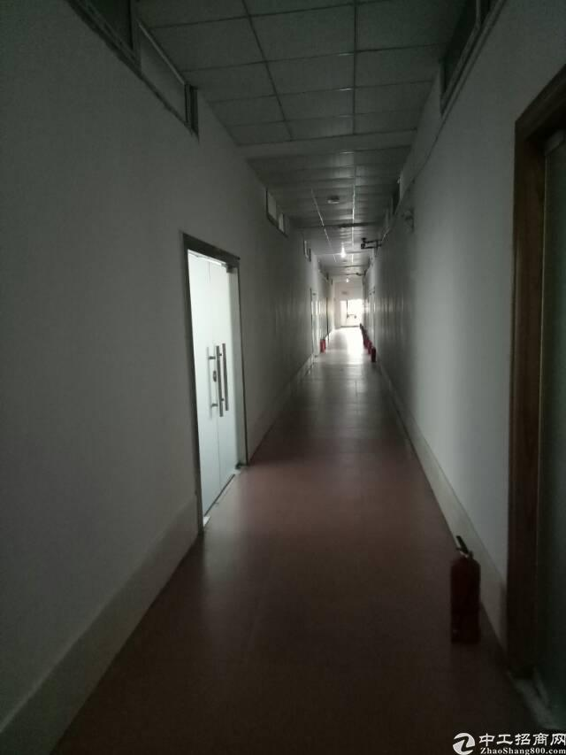 布吉吉华路长龙地铁口空出办公室了300平