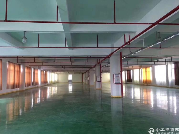 形象好!有红本!坪山大工业区楼上全新1500平带地平漆可分租