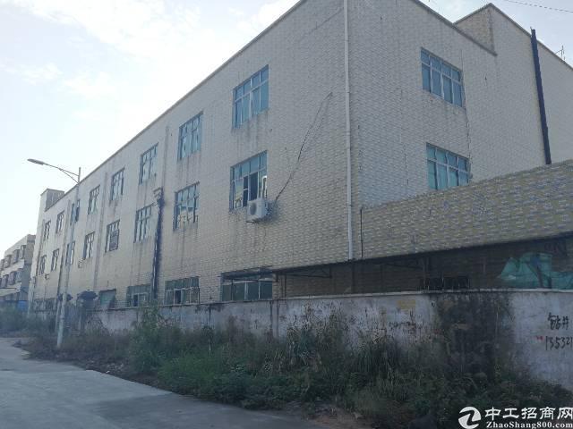深圳龙岗坪地独院厂房出售